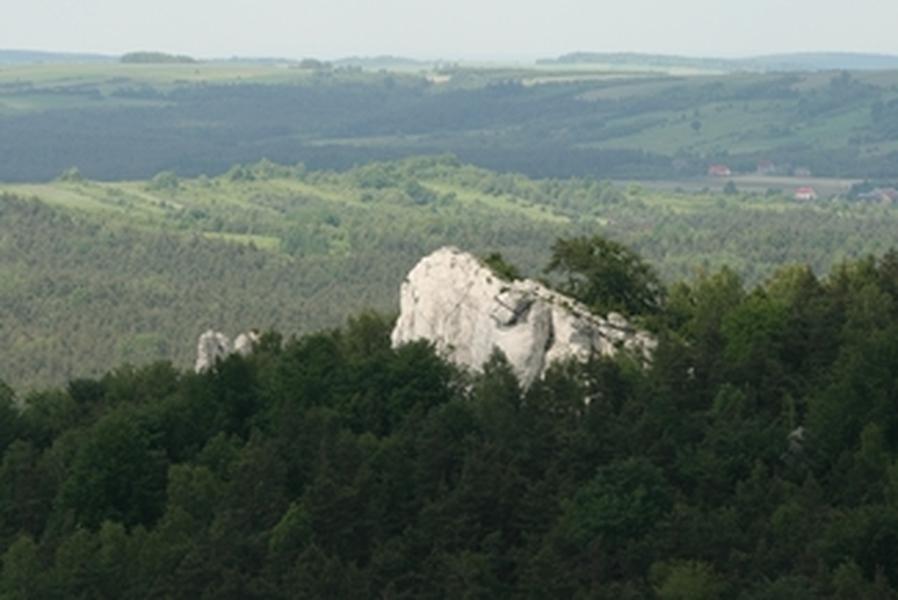 Jurajskie skaly