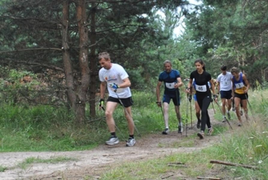 Zawody Nordic Walking
